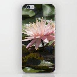 Longwood Gardens - Spring Series 304 iPhone Skin