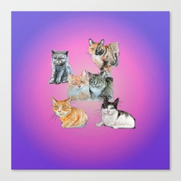 Rasmuss and friends Canvas Print