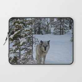 Lone wolf in the snow Laptop Sleeve