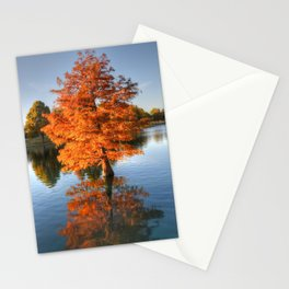 The Mirror Never Lies Stationery Cards