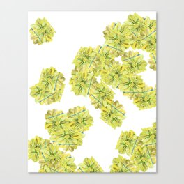 Yellow and Blue Zinnias Canvas Print