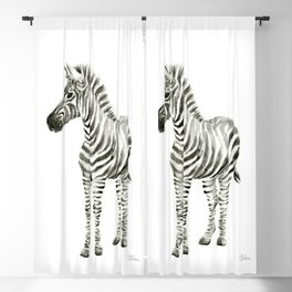Zebra Watercolor Baby Animals Blackout Curtain
