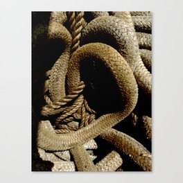 All Tied Up In Knots Canvas Print