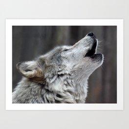 Howling Tundra Wolf Art Print