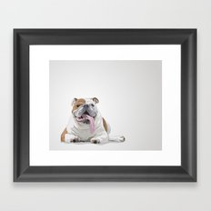 Bulldog with a Big Tongue Illustration Framed Art Print