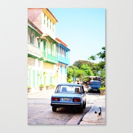 136. The lonely cat, Cuba Canvas Print