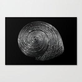 Metal Nautilida #2 Canvas Print