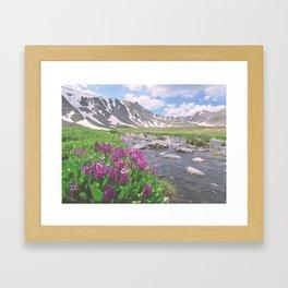 Above the tree line, in the tundra above Breckenridge, Colorado Framed Art Print