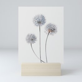 Dandelion 2 Mini Art Print