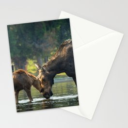 Love between Mother And Calf Moose Stationery Cards