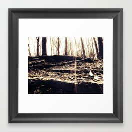 Look to the trees Framed Art Print