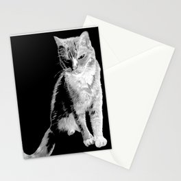 Harvard Stationery Cards
