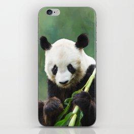 Painting Panda Bear Long Hui iPhone Skin