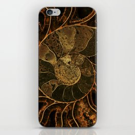 Earth treasures iPhone Skin