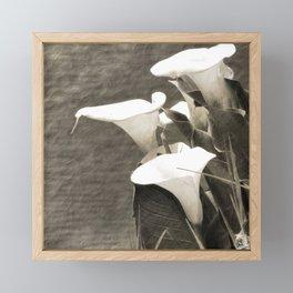 Calla Lily Flower Sepia Photo Framed Mini Art Print