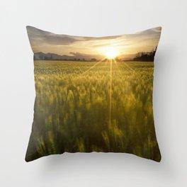 Sunset over a wheat field Throw Pillow