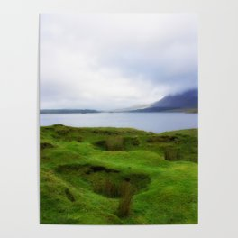 green grass carpet Poster