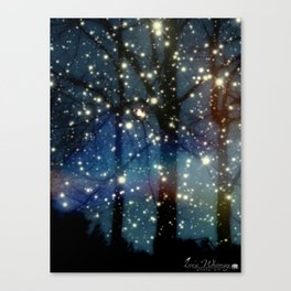 Fairy Night Canvas Print