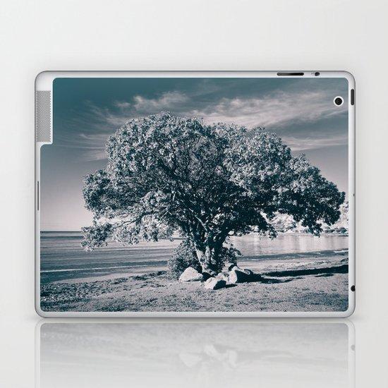 The Pohutukawa, New Zealand's Christmas Tree. Laptop & iPad Skin