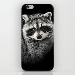 A Gentle Raccoon iPhone Skin