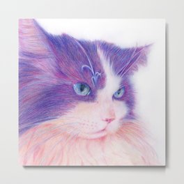 miwa cat 2 ~fred~ Metal Print