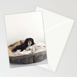 Sleepy Cavalier Stationery Cards