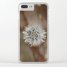 Closeup Of Mature Seed-head Coachella Wildlife Preserve Clear iPhone Case