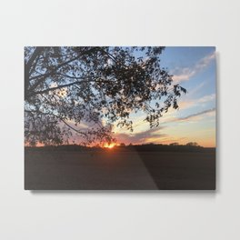 Through the Field and Past the Trees Metal Print