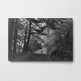 Canal, Bute Park, Cardiff. (Black and White) Metal Print