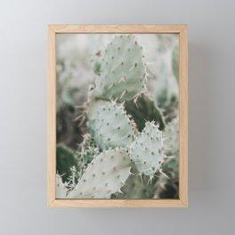 Cactus Closeup Framed Mini Art Print