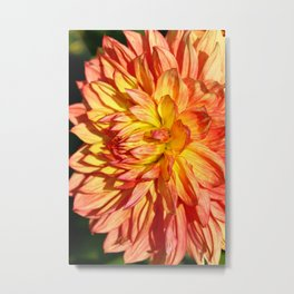 Radiant Orange Metal Print