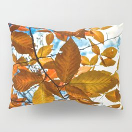 Fall Leaves in the Afternoon - The Peace Collection Pillow Sham
