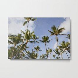 Palmy Blue. Metal Print