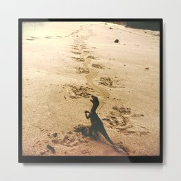 Father's Footsteps Metal Print