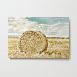 Come Full Circle Metal Print
