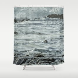 Harbor Seal, No. 1 Shower Curtain