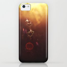 Phi // The Golden Ratio iPhone Case
