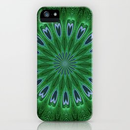 Feather Eyes iPhone Case