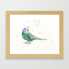 Budgerigar Watercolor Print Framed Art Print