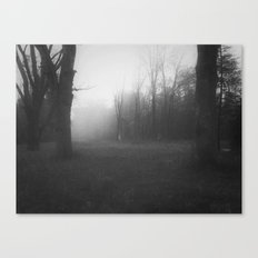 The Fog in the Hollow Canvas Print