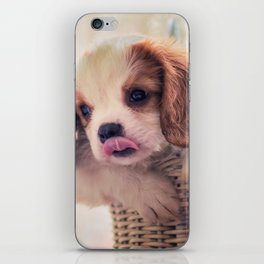 Fuzzywazzi iPhone Skin