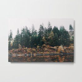 Gillette Lake III Metal Print
