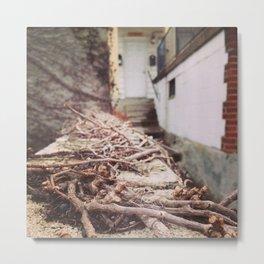 The wall. Metal Print