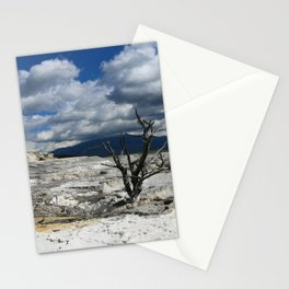Minerva Spring and Terrace Stationery Cards