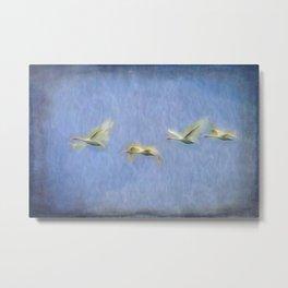 Swans Migrating  Art Metal Print