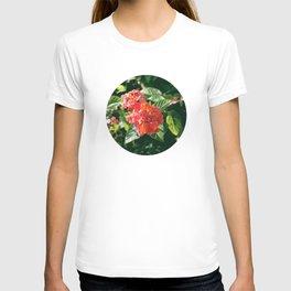 Ruby Lantana Camara T-shirt