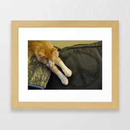 Peaceful Cat Framed Art Print