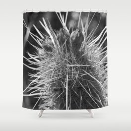 Reclamo al sol... serie 2/5 Shower Curtain
