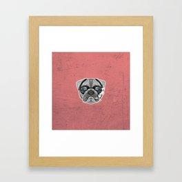 Intelectual Pug Framed Art Print