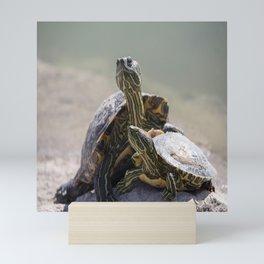 Turtle Love Mini Art Print
